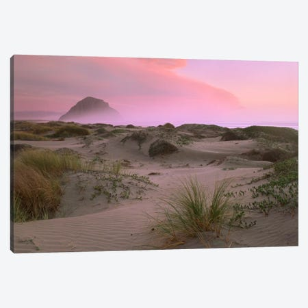 Morro Rock At Morro Bay, California Canvas Print #TFI623} by Tim Fitzharris Canvas Wall Art