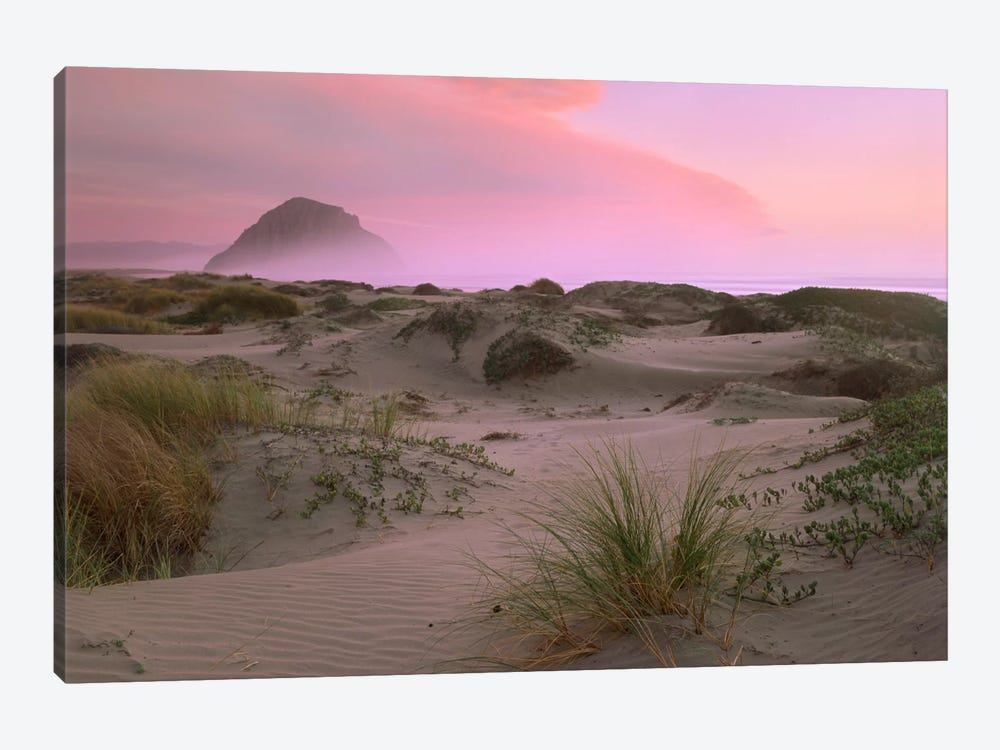 Morro Rock At Morro Bay, California by Tim Fitzharris 1-piece Art Print
