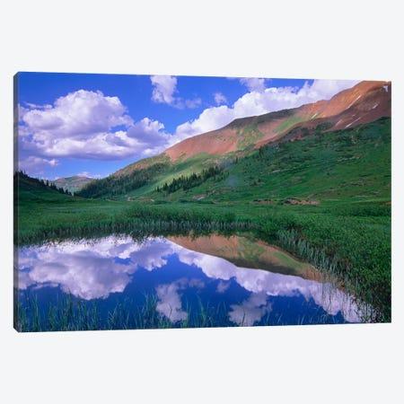 Mount Baldy And Elk Mountains, Colorado Canvas Print #TFI626} by Tim Fitzharris Canvas Art Print
