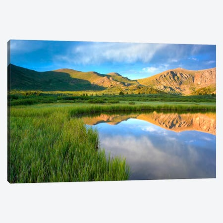 Mount Bierstadt From Guanella Pass Reflected In Pond, Colorado Canvas Print #TFI629} by Tim Fitzharris Canvas Art
