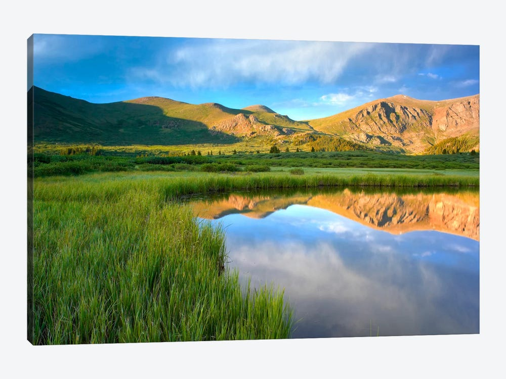 Mount Bierstadt From Guanella Pass Reflected In Pond, Colorado by Tim Fitzharris 1-piece Art Print