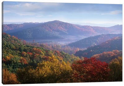 Autumn Deciduous Forest From The Blue Ridge Parkway, North Carolina Canvas Art Print