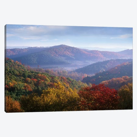 Autumn Deciduous Forest From The Blue Ridge Parkway, North Carolina Canvas Print #TFI62} by Tim Fitzharris Canvas Art