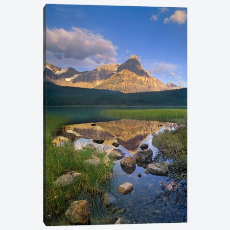 Mount Chephren And Waterfowl Lake, Banff National Park, Alberta, Canada Canvas Print #TFI630} by Tim Fitzharris Art Print