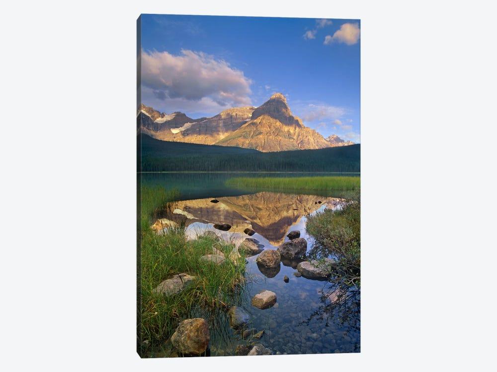 Mount Chephren And Waterfowl Lake, Banff National Park, Alberta, Canada by Tim Fitzharris 1-piece Art Print
