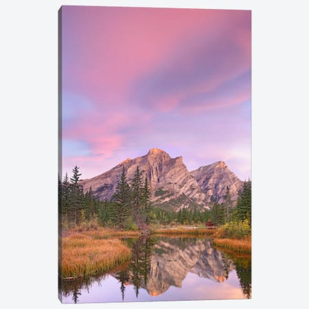 Mount Kidd And Trees Reflected In Pond, Alberta, Canada Canvas Print #TFI632} by Tim Fitzharris Art Print