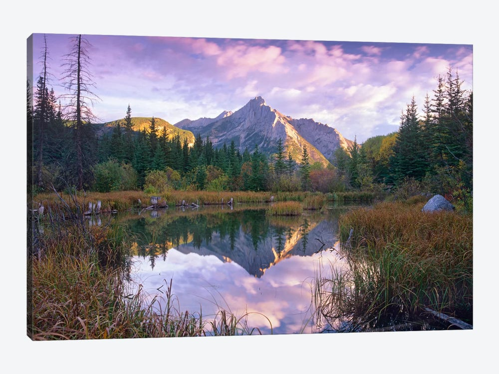 Mount Lorette And Spruce Trees Reflected In Lake, Alberta, Canada by Tim Fitzharris 1-piece Canvas Artwork