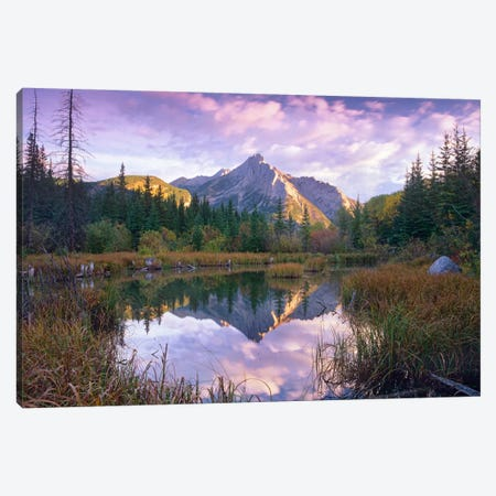 Mount Lorette And Spruce Trees Reflected In Lake, Alberta, Canada Canvas Print #TFI633} by Tim Fitzharris Canvas Print
