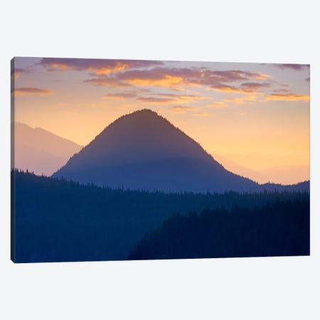 Mount Rainier From Sunrise Point, Mount Rainier National Park, Washington Canvas Print #TFI640} by Tim Fitzharris Canvas Artwork
