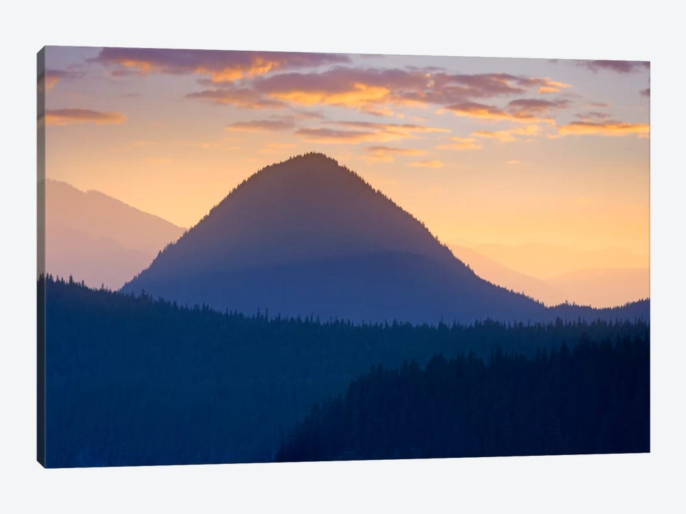 Mount Rainier From Sunrise Point, Mount Rainier National Park, Washington by Tim Fitzharris 1-piece Canvas Art