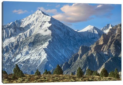 Mount Tom, Sierra Nevada, John Muir Wilderness, Inyo National Forest, California Canvas Art Print