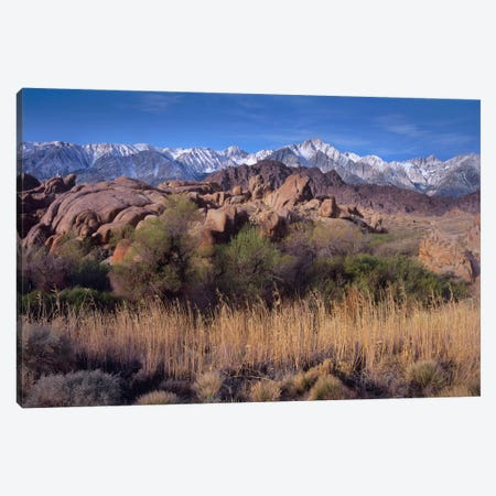 Mount Whitney And The Sierra Nevada From Alabama Hills, California Canvas Print #TFI648} by Tim Fitzharris Canvas Wall Art