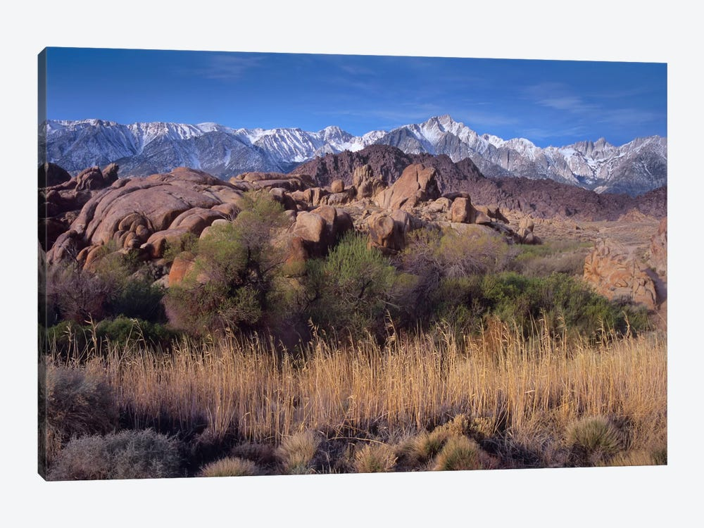 Mount Whitney And The Sierra Nevada From Alabama Hills, California by Tim Fitzharris 1-piece Canvas Artwork