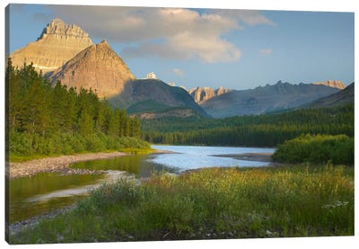 Mount Wilbur At Fishercap Lake, Glacier National Park, Montana Canvas Art Print