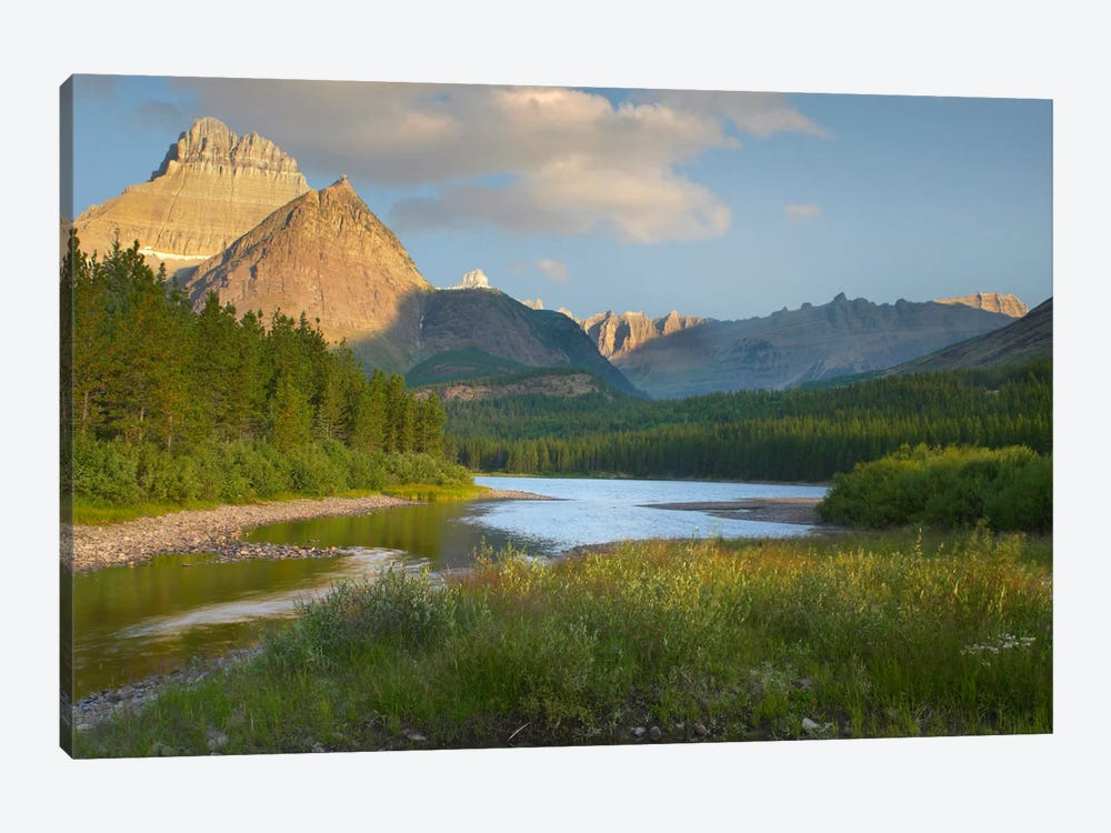 Mount Wilbur At Fishercap Lake, Glacier National Park, Montana by Tim Fitzharris 1-piece Canvas Art Print