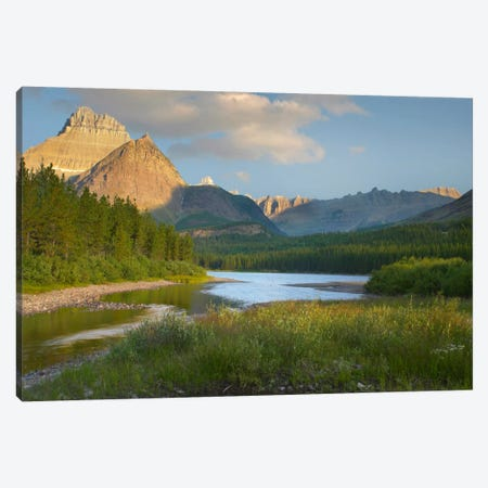 Mount Wilbur At Fishercap Lake, Glacier National Park, Montana Canvas Print #TFI649} by Tim Fitzharris Canvas Art