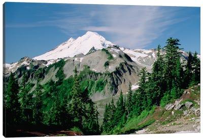 Mt Baker, Cascade Mountains, Washington Canvas Art Print