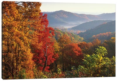 Autumn Foliage On Blue Ridge Range Near Jumping Off Rock, North Carolina Canvas Art Print