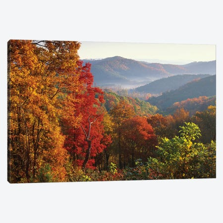 Autumn Foliage On Blue Ridge Range Near Jumping Off Rock, North Carolina Canvas Print #TFI65} by Tim Fitzharris Canvas Print