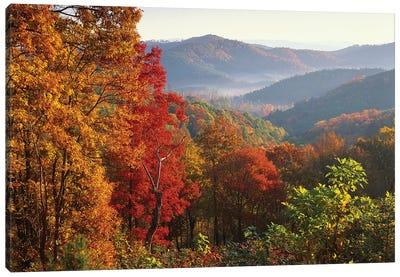 Autumn Foliage On Blue Ridge Range Near Jumping Off Rock, North Carolina Canvas Art Print