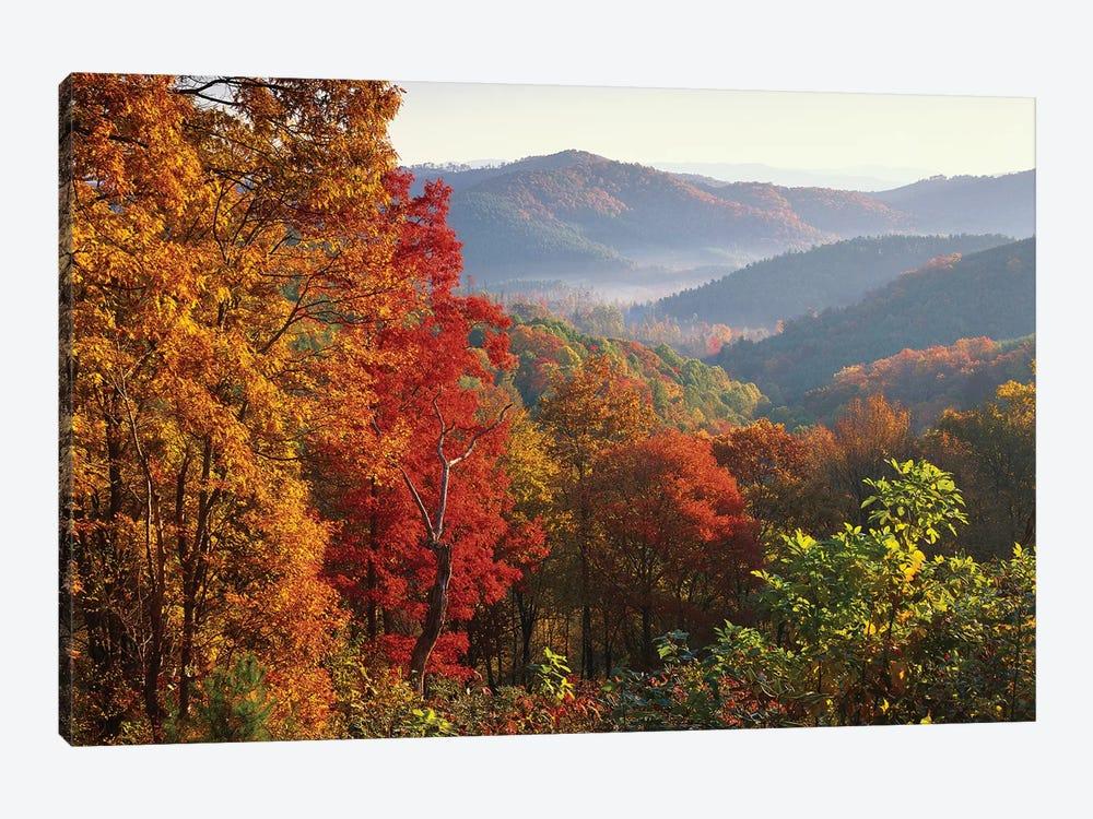Autumn Foliage On Blue Ridge Range Near Jumping Off Rock, North Carolina by Tim Fitzharris 1-piece Canvas Print