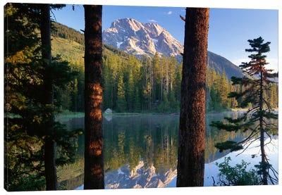 Mt Moran Reflected In String Lake, Grand Teton National Park, Wyoming Canvas Art Print