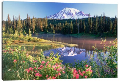Mt Rainier And Wildflowers At Reflection Lake, Mt Rainier National Park, Washington Canvas Art Print