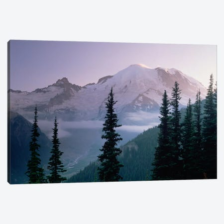 Mt Rainier As Seen At Sunrise, Mt Rainier National Park, Washington I Canvas Print #TFI665} by Tim Fitzharris Canvas Print