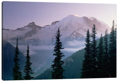 Mt Rainier As Seen At Sunrise, Mt Rainier National Park, Washington I Canvas Art Print
