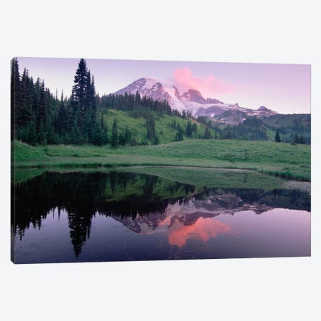 Mt Rainier Reflected In Lake, Mt Rainier National Park, Washington I Canvas Print #TFI666} by Tim Fitzharris Art Print
