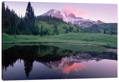 Mt Rainier Reflected In Lake, Mt Rainier National Park, Washington I Canvas Art Print