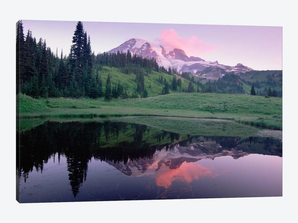 Mt Rainier Reflected In Lake, Mt Rainier National Park, Washington I by Tim Fitzharris 1-piece Canvas Wall Art