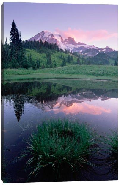 Mt Rainier Reflected In Lake, Mt Rainier National Park, Washington II Canvas Art Print