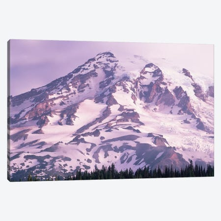 Mt Rainier, Mt Rainier National Park, Washington Canvas Print #TFI670} by Tim Fitzharris Art Print