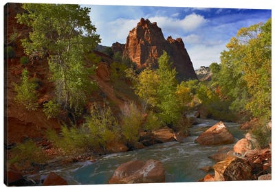 Mt Spry At 5,823 Foot Elevation With The Virgin River Surrounded By Cottonwood Trees, Zion National Park, Utah I Canvas Art Print