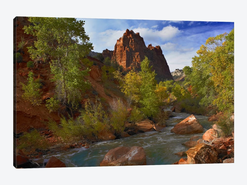 Mt Spry At 5,823 Foot Elevation With The Virgin River Surrounded By Cottonwood Trees, Zion National Park, Utah I by Tim Fitzharris 1-piece Canvas Artwork