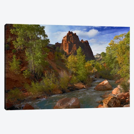 Mt Spry At 5,823 Foot Elevation With The Virgin River Surrounded By Cottonwood Trees, Zion National Park, Utah I Canvas Print #TFI673} by Tim Fitzharris Canvas Art Print