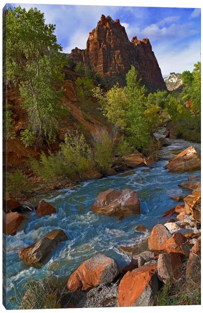 Mt Spry At 5,823 Foot Elevation With The Virgin River Surrounded By Cottonwood Trees, Zion National Park, Utah II Canvas Art Print