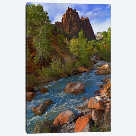 Mt Spry At 5,823 Foot Elevation With The Virgin River Surrounded By Cottonwood Trees, Zion National Park, Utah II Canvas Print #TFI674} by Tim Fitzharris Canvas Artwork