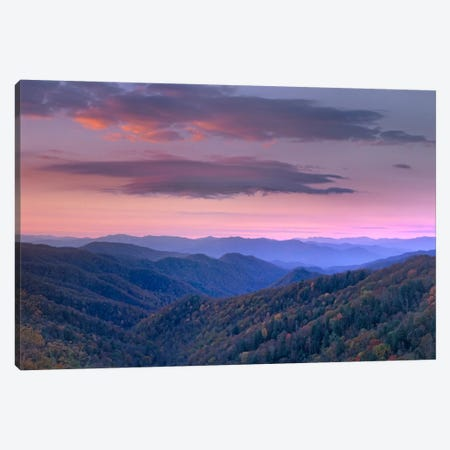 Newfound Gap, Great Smoky Mountains National Park, North Carolina Canvas Print #TFI681} by Tim Fitzharris Canvas Artwork