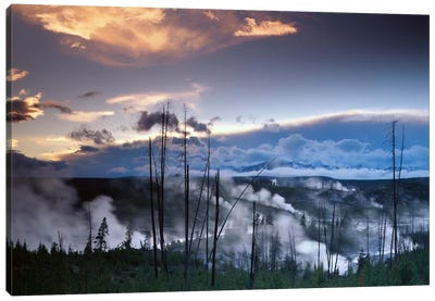 Norris Geyser Basin With Steam Plumes From Geysers, Yellowstone National Park, Wyoming Canvas Art Print