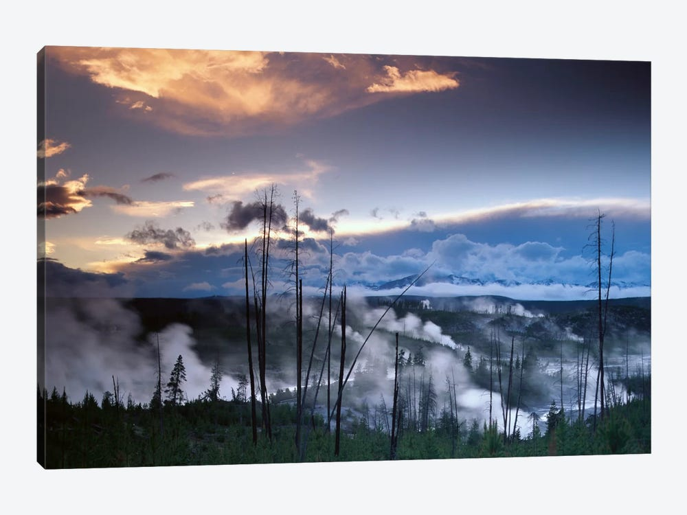 Norris Geyser Basin With Steam Plumes From Geysers, Yellowstone National Park, Wyoming by Tim Fitzharris 1-piece Canvas Wall Art