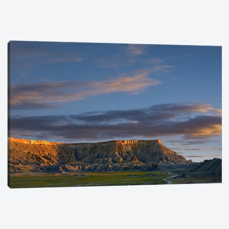 North Caineville Mesa Near Capitol Reef National Park, Utah Canvas Print #TFI685} by Tim Fitzharris Canvas Print