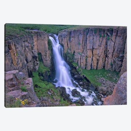 North Clear Creek Falls Cascading Down Cliff, Colorado I Canvas Print #TFI686} by Tim Fitzharris Art Print