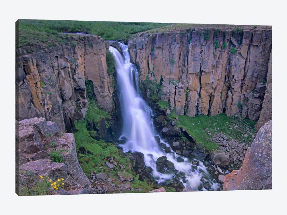 North Clear Creek Falls Cascading Down Cliff, Colorado I by Tim Fitzharris 1-piece Canvas Artwork