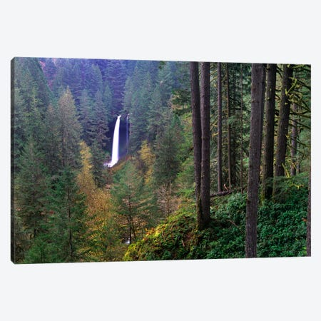 North Falls, Silver Falls State Park Near Salem, Oregon Canvas Print #TFI688} by Tim Fitzharris Canvas Wall Art