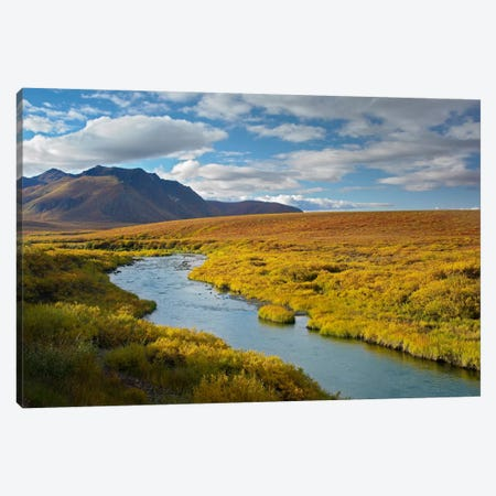 North Klondike River Flowing Through Tundra Beneath The Ogilvie Mountains, Yukon Territory, Canada Canvas Print #TFI689} by Tim Fitzharris Canvas Artwork