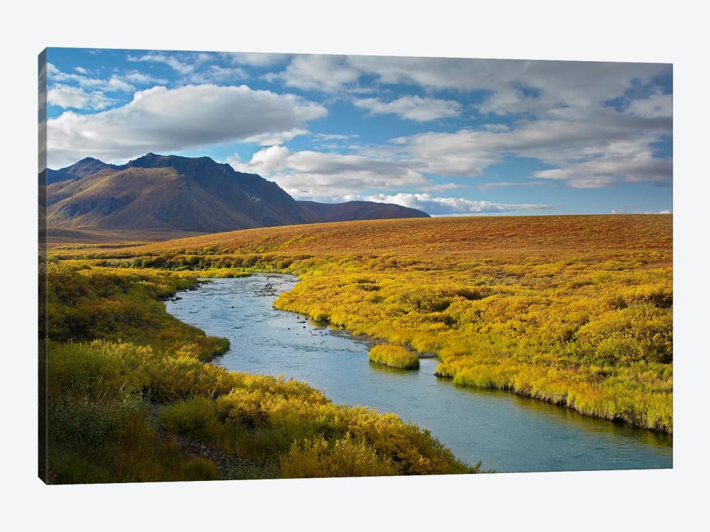 North Klondike River Flowing Through Tundra Beneath The Ogilvie Mountains, Yukon Territory, Canada by Tim Fitzharris 1-piece Art Print