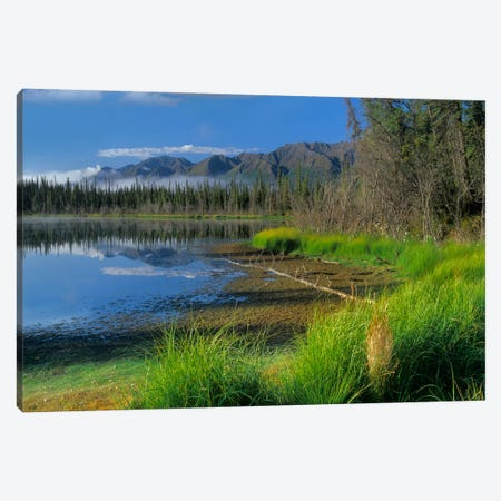 Nutzotin Mountains And Boreal Forest Reflected In Receding Lake, Alaska Canvas Print #TFI699} by Tim Fitzharris Canvas Print