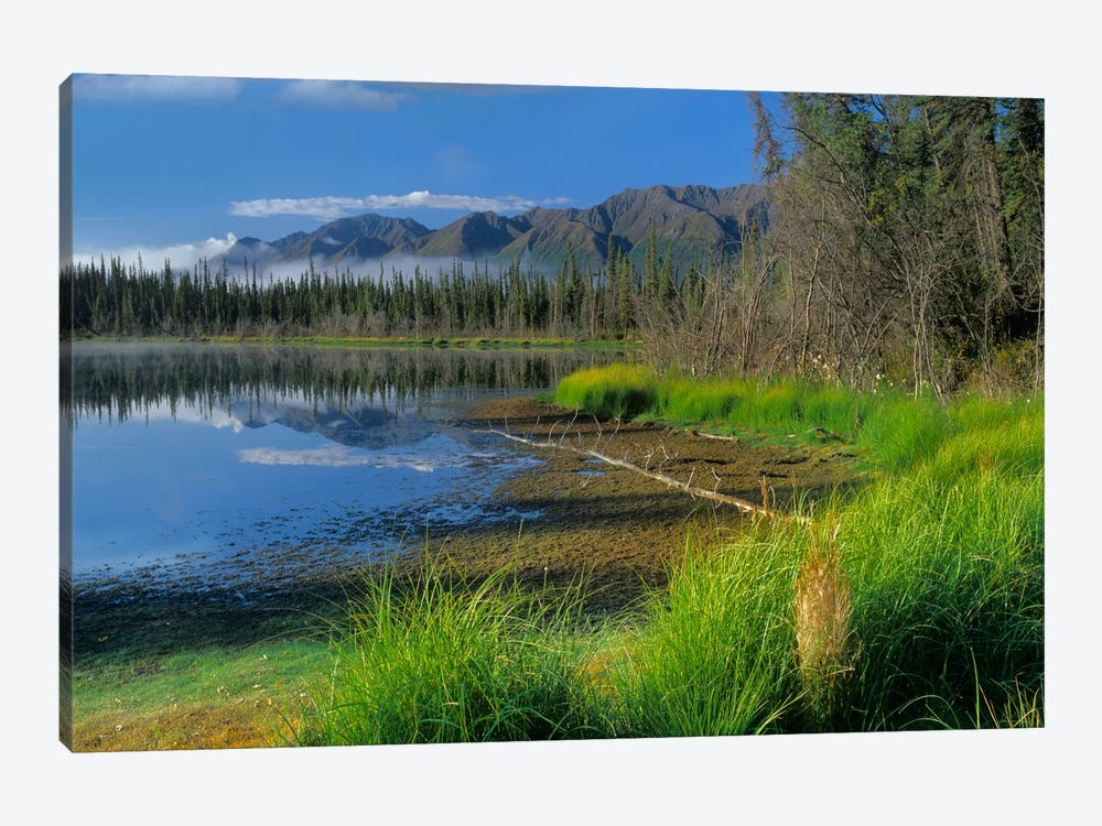 Nutzotin Mountains And Boreal Forest Reflected In Receding Lake, Alaska by Tim Fitzharris 1-piece Canvas Art